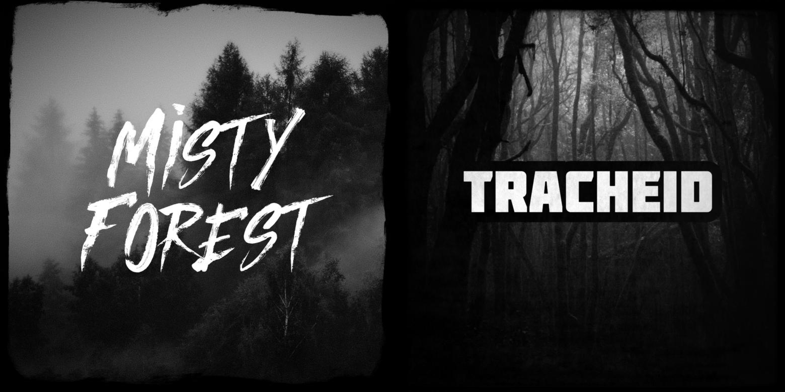 hudební skladby Misty Forest & Tracheid